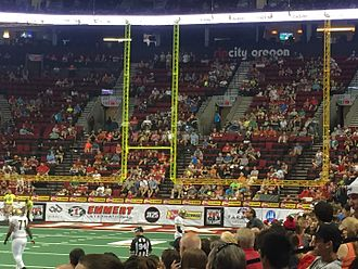 Professional sports leagues in the United States - An AFL endzone and goalpost