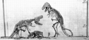 Scale model of the never-completed Tyrannosaurus rex exhibit planned for the American Museum of Natural History by H.F. Osborn.
