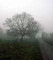 A December view of Woodnook Valley, Little Ponton, Lincolnshire, England 02.JPG