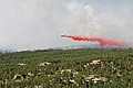 A U.S. Air Force modular airborne fire fighting system-equipped C-130 Hercules aircraft assigned to the 302nd Airlift Wing releases a fire-retardant solution to help stop the spreading of fires in Black Forest 130612-A-RI441-137.jpg