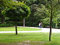 A Walk in the park.JPG