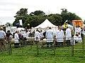 A day at the Aylsham Show - sheep judging - geograph.org.uk - 937043.jpg