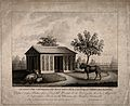 A gnu and two goats in the Jardin des Plantes, Paris. Lithog Wellcome V0014693.jpg