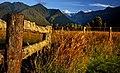 A rural sunset - Fence - Mountain view NZ (12185710855).jpg