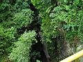 Abismo Puente Natural icononzo Tolima.JPG