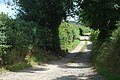 Access track at Old Marton - geograph.org.uk - 1442953.jpg