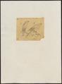 Accipiter rhodogaster - 1868 - Print - Iconographia Zoologica - Special Collections University of Amsterdam - UBA01 IZ18300123.tif