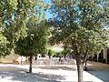 Accueil Pont du Gard.jpg