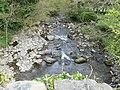 Afon Rhaeadr from Pont Newydd - geograph.org.uk - 1273591.jpg