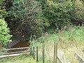 Afon Terrig - geograph.org.uk - 1512168.jpg
