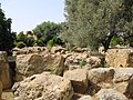 Agrigento, Tempio di Giove Olimpio (2).jpg