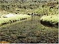 Aguas cristalinas - panoramio.jpg