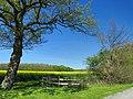 Ahlen, Germany - panoramio (56).jpg