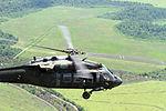 Air Cav takes to skies across Texas 140721-A-WD324-019.jpg