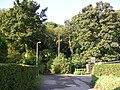 Alkrington Woods - geograph.org.uk - 63100.jpg