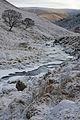 Allt Calder in Winter - geograph.org.uk - 1103727.jpg