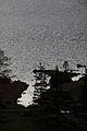 Altausseer See nordost 78982 2014-11-15.JPG