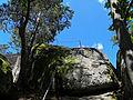 Am unteren Ende des Steigs auf den Herzogreitherfelsen.jpg