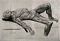 An écorché figure, lying supine on a slab. Wellcome V0008841.jpg