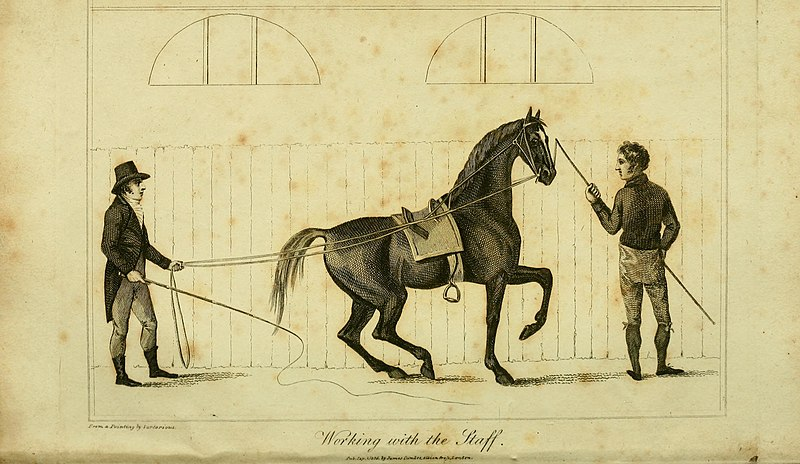 File:An analysis of horsemanship - teaching the whole art of riding, in the manege, military, hunting, racing, and travelling system - together with the method of breaking horses, for every purpose to (18165467302).jpg