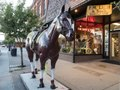 An eminently rideable display horse outside the venerable F.M. Light & Sons western-wear store, founded in 1905 in Steamboat Springs, Colorado. Passersby with small children cannot seem to resist LCCN2015633756.tif