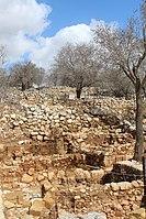 Ancient Shiloh IMG 2921.JPG