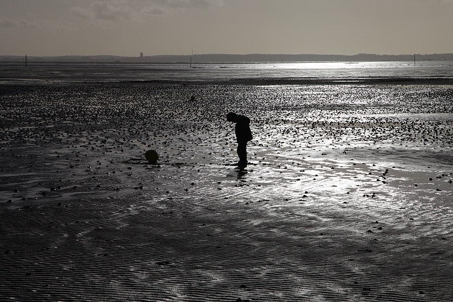En pleine journée à marée basse...