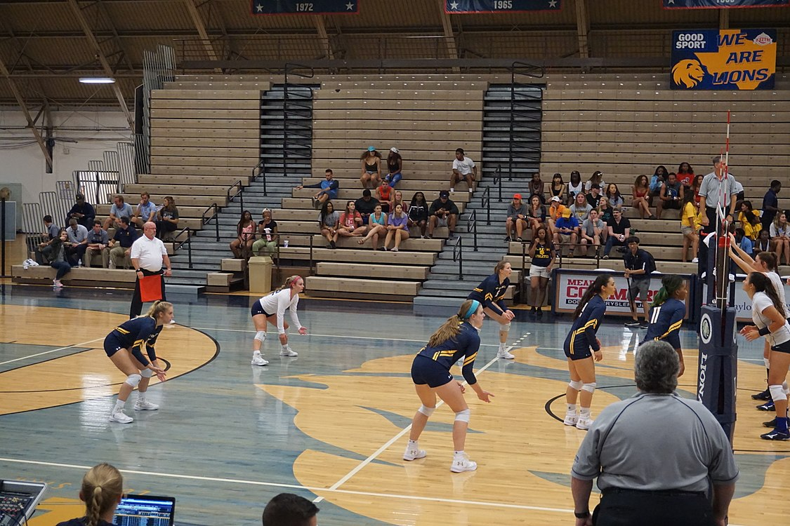 Angelo State vs. Texas A&M–Commerce volleyball 2017 10.jpg