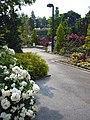 Aramaki rose park13s2400.jpg