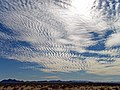 Arizona (5471386851).jpg