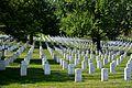 Arlington National Cemetery, Gravestones 2.JPG