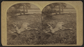 At Raquette Lake, September, 1879, by Stoddard, Seneca Ray, 1844-1917 , 1844-1917.png