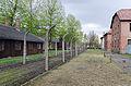 Auschwitz I, april 2014, photo 1.jpg