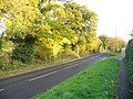 Autumn on Merrow Lane - geograph.org.uk - 1030954.jpg