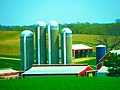Ballweg Farm with Five Silos - panoramio.jpg
