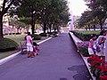 Bangkok, Chuvit Garden (Sukhumvit, Soi 10) - panoramio.jpg