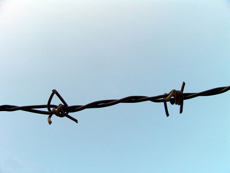 File:Barbed Wire 2.JPG