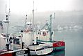 Bateaux de pêche dans le Bassin d' échouage du Port de La Rochelle (10).jpg
