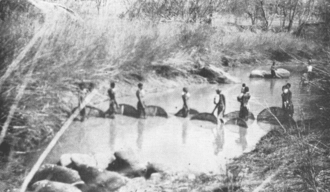 Batonga fisherwomen in Southern Zambia. Women have and continue to play important roles in many African societies. Batonga women.png