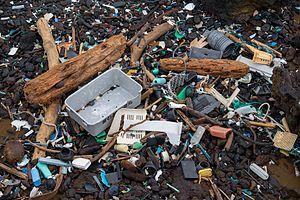 Beach trash (30870156434).jpg