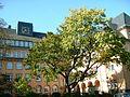 Beckmann schule p 021.jpg