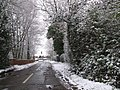 Bentley Heath Lane - The Beginning - geograph.org.uk - 320531.jpg