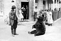 Berenleider - Animal trainer with performing bear (3280639349).jpg