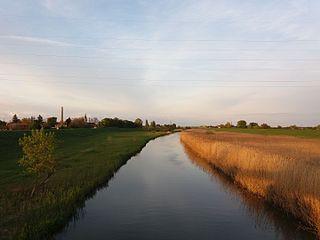 Barcău (Criș) river