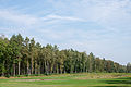 Bergen-Belsen concentration camp memorial - the former camp's main street - 04.jpg