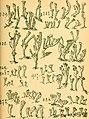 Bericht des Naturwissenschaftlichen Vereins für Schwaben und Neuburg (a.V.) in Augsburg (1908) (20339585966).jpg