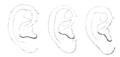 Bertillon - Identification anthropométrique (1893) 062.4 n&b.png