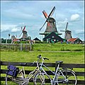 Bicycles and Dutch mills fixed torque - panoramio.jpg
