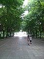 Binhu, Wuxi, Jiangsu, China - panoramio (256).jpg