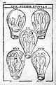 Birth Figures, 17thC Wellcome L0000533.jpg